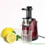 Best Price Slow Juicer to Buy