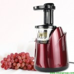 Home Use Slow Juicer